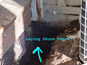 Allstate Animal Control skunk fence being installed around a porch